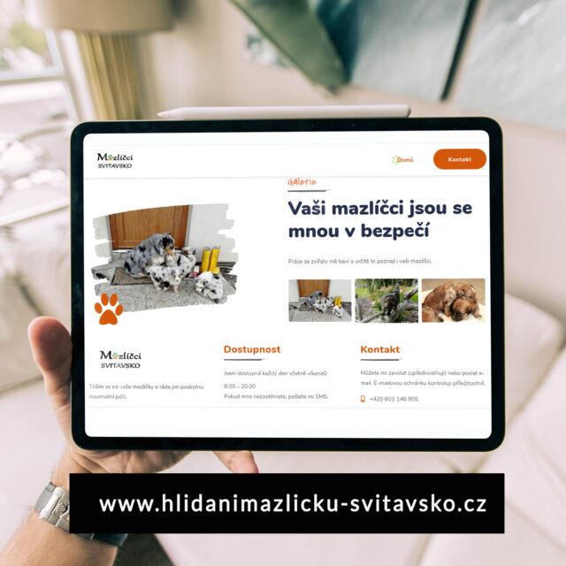 Webové stránky pro podnikatele a malé firmy